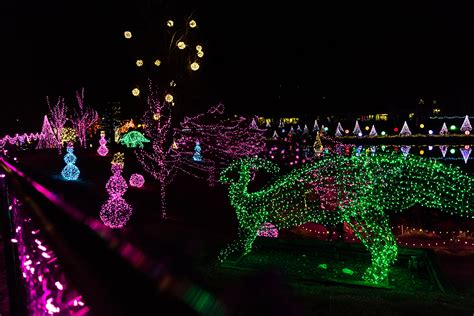 Visit the Eden Animal Experience With Lights   Creation Museum